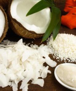 Venta de coco deshidratado Principal - Plenti S.A.S Bogotá Colombia - Elementos que Suman - Productos Naturales https://www.facebook.com/Plenticolombia-1964661053593138/ https://www.instagram.com/plenticolombia/